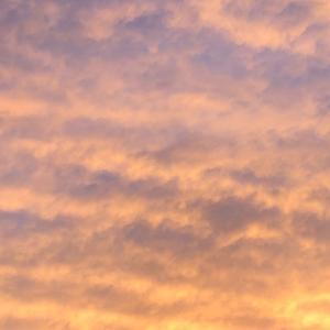 久々に空を写してみた…
