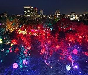 チームラボ 福岡城跡 光の祭