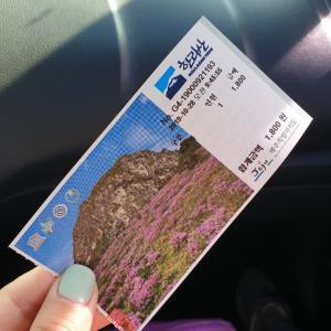 ひぃひぃ言いながらも雲の上までハンラサン登山、済州島旅行2日目