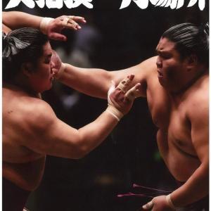 大相撲一月場所 11日目 幕下取組結果