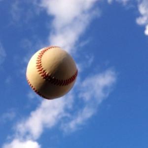 NPB開幕がスポーツ界の光となれるか !? ・・・ その2