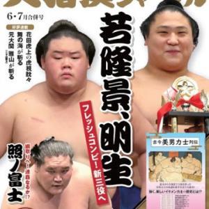 大相撲七月場所 中日 三段目取組結果