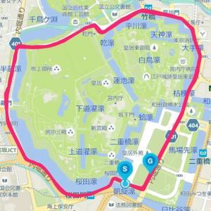 10月15日の30㎞走詳細