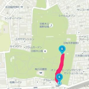 5月12日 ゆるジョグ+坂ダッシュ8本(お試し)