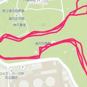 6月17日 ゆるジョグ30分、入浴と睡眠を優先し最低限のトレーニング