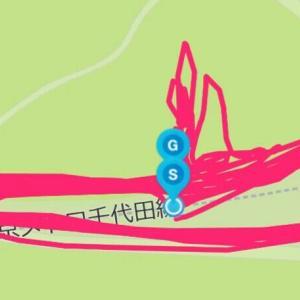 10月21日 インターバル1000m×5本(クロカン練習会)、目的を明確に