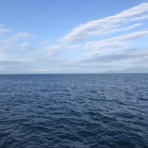 ヒラメ釣りでの釣れる潮の流れの読み方とは【釣果に重大な影響アリ】