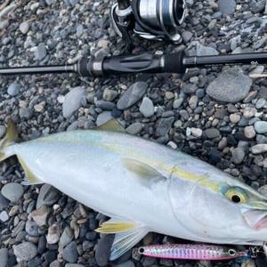 富士サーフスーパーライトショアジギング釣行 ワカシ・イナダ好調