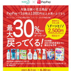 PayPay×花王のキャンペーンがまた始まっていた。