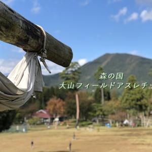 【西日本最大級】森の国大山フィールドアスレチックの全て-昆虫コース編