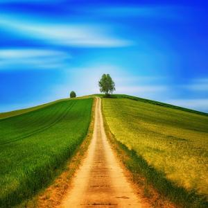 ちょっと物足りなくなったら  いつもと変わり映えしなくなったら 新しい何かと出逢いたくなったら