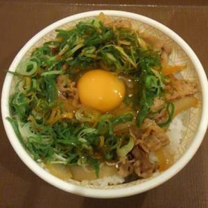 すき家「ねぎ玉牛丼」コチュジャンにコクが絶妙!ランチ継続 ワンコイン500円