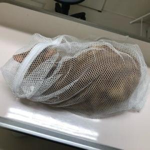 修造&駿平&優香、病院
