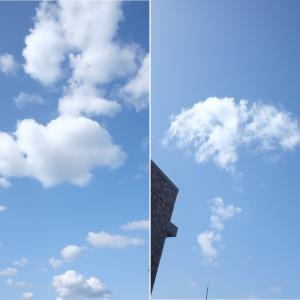 空とクンクン・チェックとぷち迷子