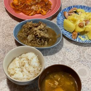 夜ご飯と弁当