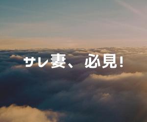 日本でも導入すべきか?