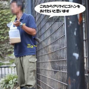 ゴハンが待ちきれな~い!