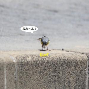 スキップスキップ~♪