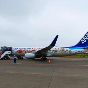 ANA 4929便搭乗記 束の間の最北端プレミアムクラス
