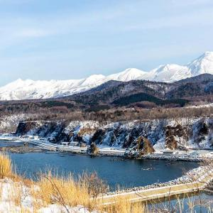 ANAで北海道を周る人は要チェック。バス代が無料になるかも