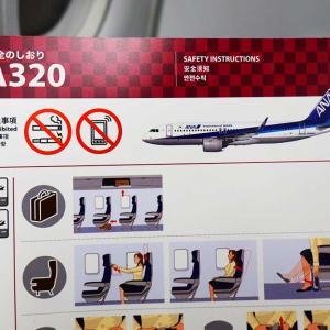 ANAプレミアムクラス搭乗記 599便 国際線機材は当たりなのか