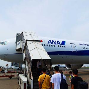 【ANA事業構造改革】第3ブランドの国際線LCCとは。海外マイル修行の敵となるのか