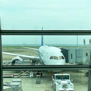 ANA 7月4連休の臨時便と国際線機材
