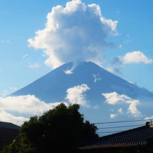 【JR東海・完乗】御殿場線・富士山大迫力
