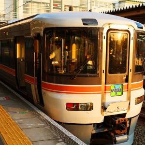 【JR東海・完乗】飯田線 乗っていても見所満載