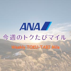 【ANA トクたびマイル 9月2週目】ある意味最強