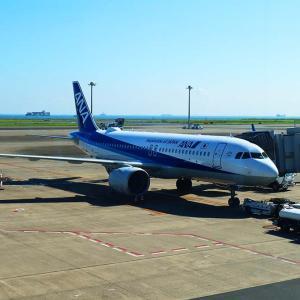 【ANA国内線】10月後半の臨時便設定一覧