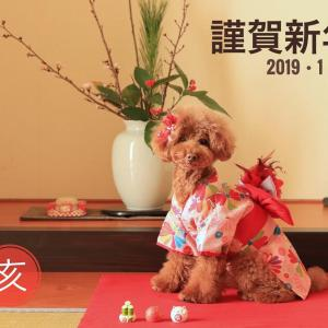 新年→おめでとう←お誕生日