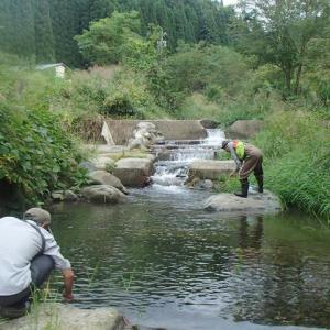 男たちの午後 禁漁前のカジカ釣り