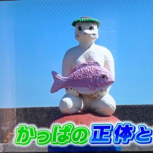 知多半島美浜町で食べて・買い物して・かっぱの家族を探す①(*・ᴗ・*)و