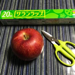 りんごの保存方法( *´꒳`*)長持ちしますよ!