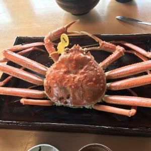 Go To Eatの食事券を使って福井県にカニを食べに行ってきました(*•̀ᴗ•́*)و