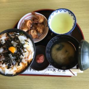 自宅でくつろいでいます(⑅•ᴗ•⑅)旅の最終日、福井で食べたプリプリのイカ丼は美味しいね♪