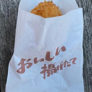 北陸プチオフ会٩(๑> ₃ <)۶山中温泉を散策して人気店のコロッケとソフトクリームを食べる!