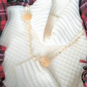 楽天イーグルス感謝祭の買い物リスト*冬支度します