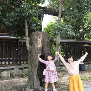 「開運パワー」ハンパない〜!〇〇神社行ってみて!!〜10月人気記事ランキング〜