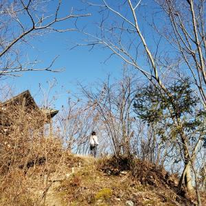 今年最後の八重山へ(八重山102回目)(2019年12月31日)