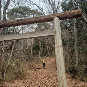 冬の散歩道(八重山111回目)(2020年1月17日)