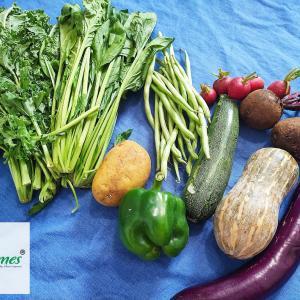 【ホーチミン】「Legumes」オーガニック野菜ボックス販売開始!