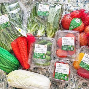 【デリバリー】「Dalat Hasfarm」お手頃価格!野菜・お花の宅配【ベトナム】