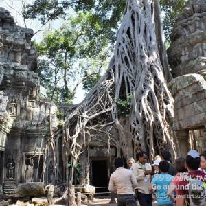 巨木の根が侵食する寺院「タ・プローム」