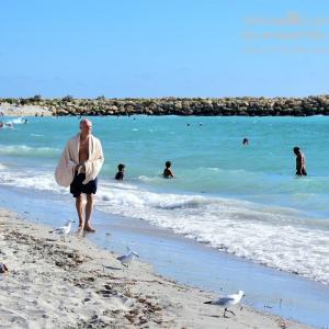オーストラリアの海が見たい!パース郊外「サウスビーチ」へ