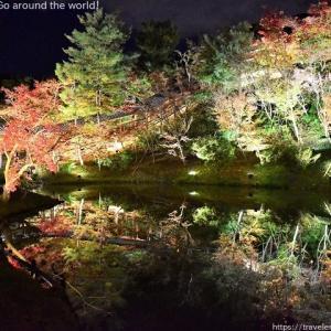 ライトアップ紅葉「高台寺」