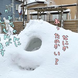 また雪降った!