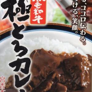 【評価5】宮香本舗 黒毛和牛 極とろカレーを冷やして食べると? 【ウマすぎ注意】 (株式会社タスクフーズ)