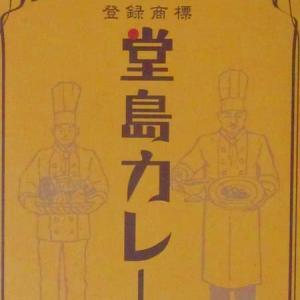 【評価5】堂島カレー ビーフオリジナルを冷やして食べると? 【ウマすぎ注意】 (株式会社MeV)